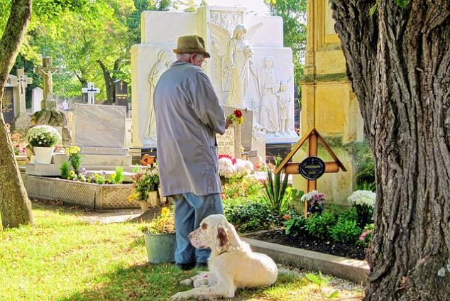 ペット霊園に来ている老人と犬