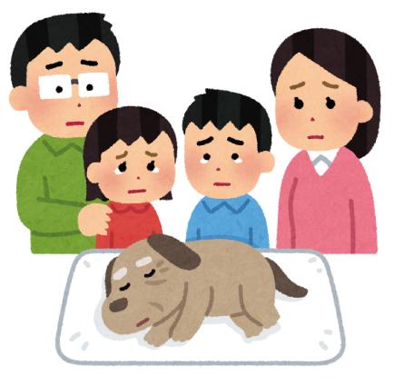 愛犬を看取った家族