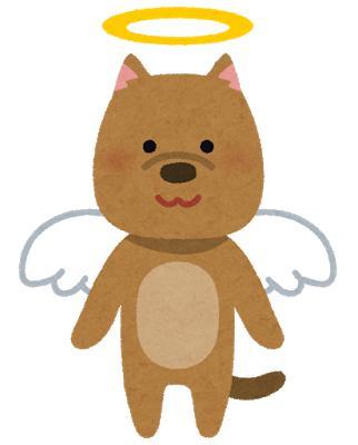 天使のワンコ
